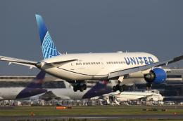 やまけんさんが、成田国際空港で撮影したユナイテッド航空 787-9の航空フォト(飛行機 写真・画像)