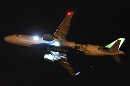 木人さんが、成田国際空港で撮影したバンブー・エアウェイズ A321-251NXの航空フォト(飛行機 写真・画像)