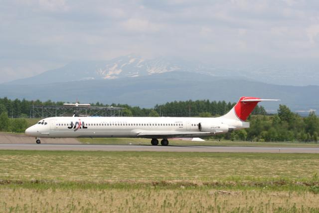 2007年06月10日に撮影されたJAL (日本航空)の航空機写真