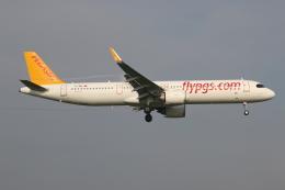 NIKEさんが、アムステルダム・スキポール国際空港で撮影したペガサス・エアラインズ A321-251NXの航空フォト(飛行機 写真・画像)