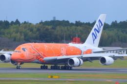 ぼのさんが、成田国際空港で撮影した全日空 A380-841の航空フォト(飛行機 写真・画像)