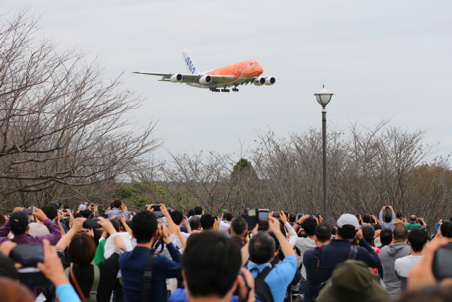 多摩川崎2Kさんが、成田国際空港で撮影した全日空 A380-841の航空フォト(飛行機 写真・画像)