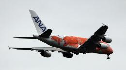 captain_uzさんが、成田国際空港で撮影した全日空 A380-841の航空フォト(飛行機 写真・画像)