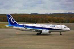 にしやんさんが、釧路空港で撮影した全日空 A320-271Nの航空フォト(飛行機 写真・画像)