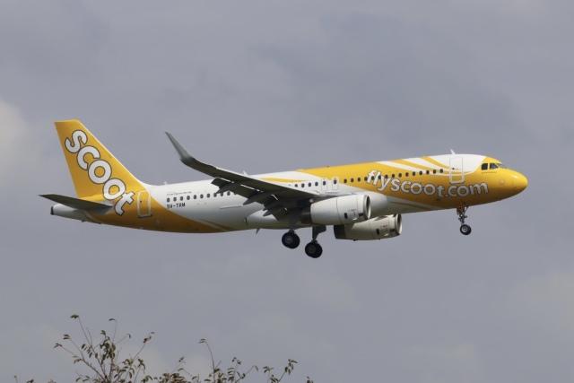 Love NRTさんが、成田国際空港で撮影したスクート A320-232の航空フォト(飛行機 写真・画像)