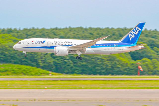 KAMIYA JASDFさんが、新千歳空港で撮影した全日空 787-8 Dreamlinerの航空フォト(飛行機 写真・画像)