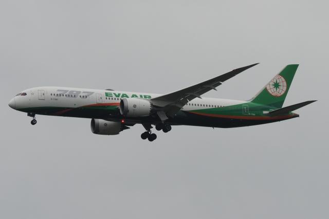 木人さんが、成田国際空港で撮影したエバー航空 787-9の航空フォト(飛行機 写真・画像)