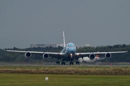 Lacnorさんが、成田国際空港で撮影した全日空 A380-841の航空フォト(飛行機 写真・画像)