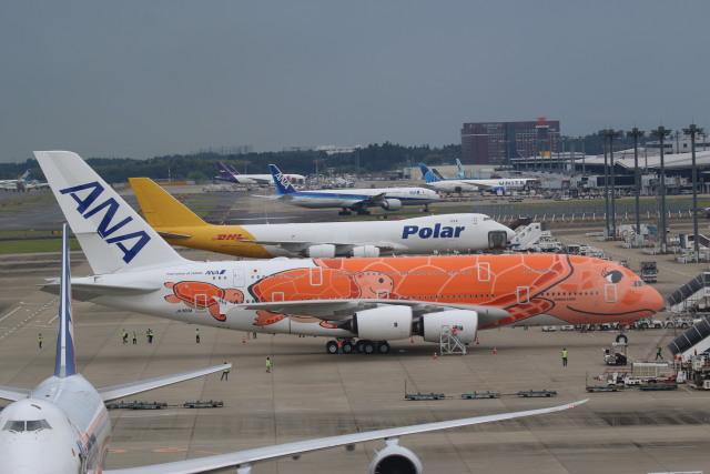 airdrugさんが、成田国際空港で撮影した全日空 A380-841の航空フォト(飛行機 写真・画像)