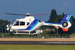 記録用さんが、鹿児島空港で撮影したオールニッポンヘリコプター EC135T2の航空フォト(飛行機 写真・画像)