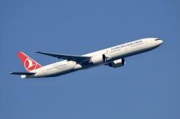NIKEさんが、アムステルダム・スキポール国際空港で撮影したターキッシュ・エアラインズ 777-3F2/ERの航空フォト(飛行機 写真・画像)