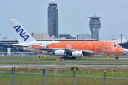 サンドバンクさんが、成田国際空港で撮影した全日空 A380-841の航空フォト(飛行機 写真・画像)