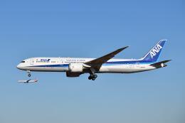 ポン太さんが、成田国際空港で撮影した全日空 787-9の航空フォト(飛行機 写真・画像)