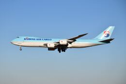 ポン太さんが、成田国際空港で撮影した大韓航空 747-8HTFの航空フォト(飛行機 写真・画像)