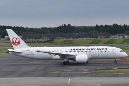 PIRORINGさんが、成田国際空港で撮影した日本航空 787-8 Dreamlinerの航空フォト(飛行機 写真・画像)