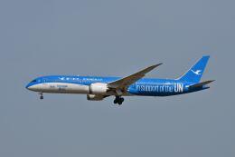 ポン太さんが、成田国際空港で撮影した厦門航空 787-9の航空フォト(飛行機 写真・画像)