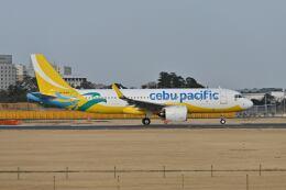 ポン太さんが、成田国際空港で撮影したセブパシフィック航空 A320-271Nの航空フォト(飛行機 写真・画像)