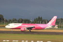 non-nonさんが、鹿児島空港で撮影したピーチ A320-214の航空フォト(飛行機 写真・画像)
