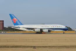 ポン太さんが、成田国際空港で撮影した中国南方航空 A380-841の航空フォト(飛行機 写真・画像)