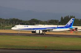 non-nonさんが、鹿児島空港で撮影した全日空 A321-272Nの航空フォト(飛行機 写真・画像)