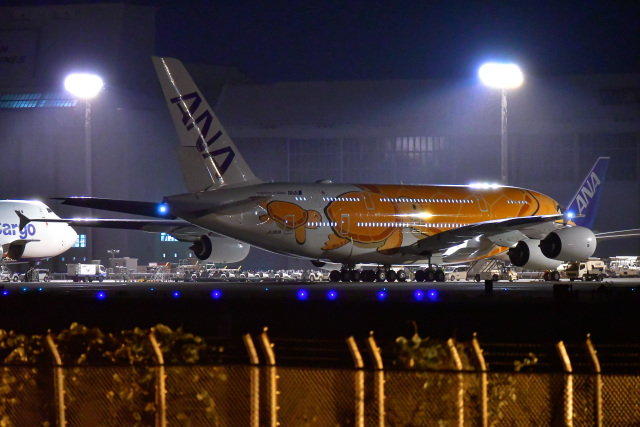 EY888さんが、成田国際空港で撮影した全日空 A380-841の航空フォト(飛行機 写真・画像)