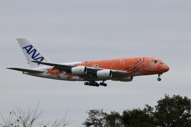 cieloさんが、成田国際空港で撮影した全日空 A380-841の航空フォト(飛行機 写真・画像)