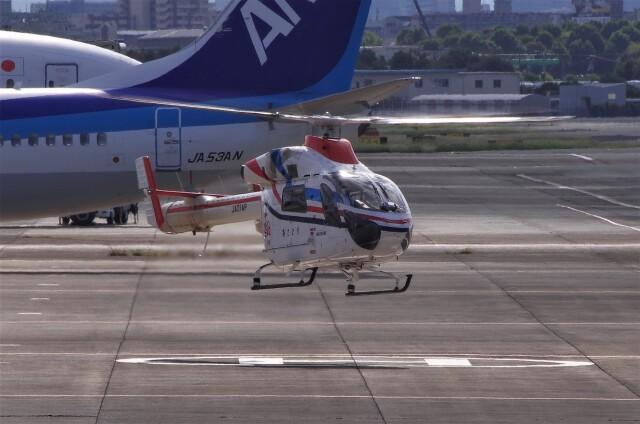 mild lifeさんが、伊丹空港で撮影した朝日新聞社 MD 900/902の航空フォト(飛行機 写真・画像)