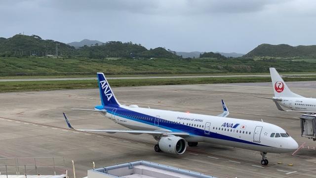 たまけんさんが、石垣空港で撮影した全日空 A321-272Nの航空フォト(飛行機 写真・画像)