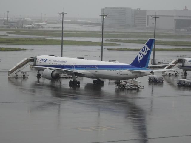 Blue779Aさんが、羽田空港で撮影した全日空 777-381/ERの航空フォト(飛行機 写真・画像)