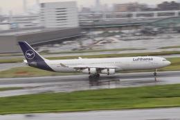 天王寺王子さんが、羽田空港で撮影したルフトハンザドイツ航空 A340-313Xの航空フォト(飛行機 写真・画像)