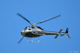 やまちゃんKさんが、那覇空港で撮影したメッシュ・サポート AS350B Ecureuilの航空フォト(飛行機 写真・画像)