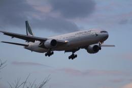 Love NRTさんが、成田国際空港で撮影したキャセイパシフィック航空 777-31Hの航空フォト(飛行機 写真・画像)