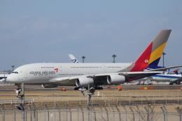 Love NRTさんが、成田国際空港で撮影したアシアナ航空 A380-841の航空フォト(飛行機 写真・画像)
