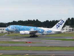 中須 無敵級*トプナン王さんが、成田国際空港で撮影した全日空 A380-841の航空フォト(飛行機 写真・画像)