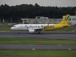 中須 無敵級*トプナン王さんが、成田国際空港で撮影したピーチ A320-214の航空フォト(飛行機 写真・画像)