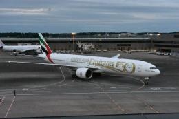 セッキーさんが、成田国際空港で撮影したエミレーツ航空 777-31H/ERの航空フォト(飛行機 写真・画像)