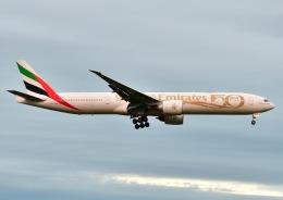 じーく。さんが、成田国際空港で撮影したエミレーツ航空 777-31H/ERの航空フォト(飛行機 写真・画像)