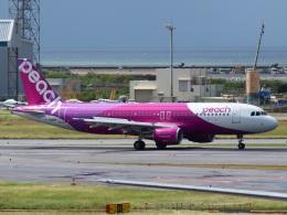 FT51ANさんが、那覇空港で撮影したピーチ A320-214の航空フォト(飛行機 写真・画像)