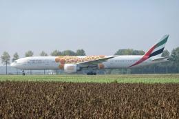 NIKEさんが、アムステルダム・スキポール国際空港で撮影したエミレーツ航空 777-31H/ERの航空フォト(飛行機 写真・画像)