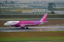 Souma2005さんが、仙台空港で撮影したピーチ A320-214の航空フォト(飛行機 写真・画像)