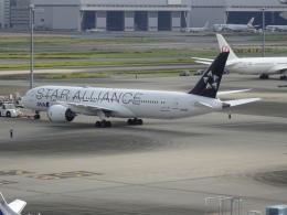 Blue779Aさんが、羽田空港で撮影した全日空 787-9の航空フォト(飛行機 写真・画像)
