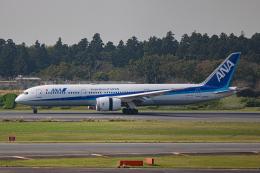 ゆーすきんさんが、成田国際空港で撮影した全日空 787-9の航空フォト(飛行機 写真・画像)
