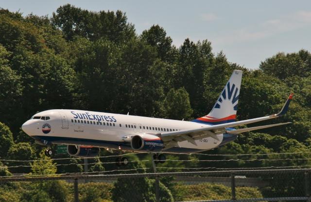 TA27さんが、ボーイングフィールドで撮影したサンエクスプレス 737-8HCの航空フォト(飛行機 写真・画像)