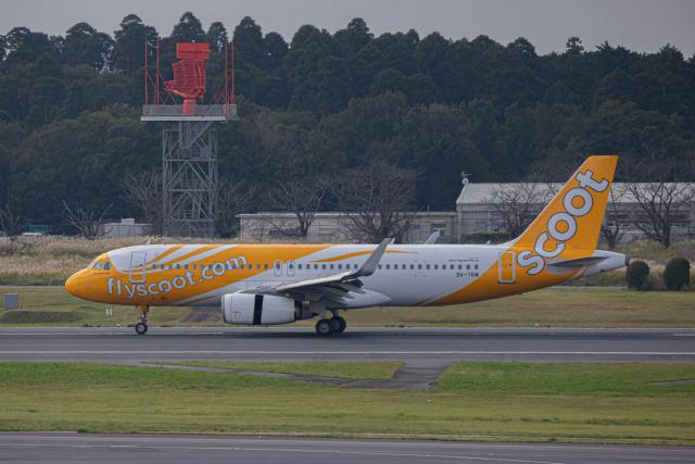 ゆーすきんさんが、成田国際空港で撮影したスクート A320-232の航空フォト(飛行機 写真・画像)