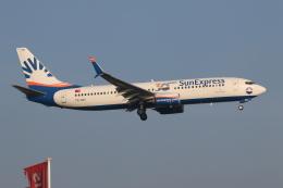 NIKEさんが、アムステルダム・スキポール国際空港で撮影したサンエクスプレス 737-8HCの航空フォト(飛行機 写真・画像)