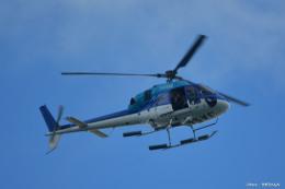 やまちゃんKさんが、那覇空港で撮影したエクセル航空 AS355N Ecureuil 2の航空フォト(飛行機 写真・画像)