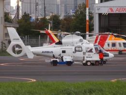 FT51ANさんが、東京ヘリポートで撮影したエアバス・ヘリコプターズ・ジャパン AS365N2 Dauphin 2の航空フォト(飛行機 写真・画像)