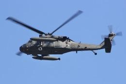 しゃこ隊さんが、横田基地で撮影したアメリカ陸軍 UH-60L Black Hawk (S-70A)の航空フォト(飛行機 写真・画像)