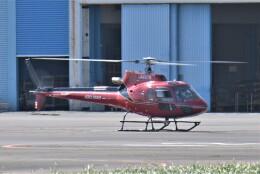 ヘリオスさんが、東京ヘリポートで撮影した朝日航洋 AS350B3e Ecureuil (H125)の航空フォト(飛行機 写真・画像)