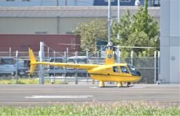 ヘリオスさんが、東京ヘリポートで撮影した温知会 R44 IIの航空フォト(飛行機 写真・画像)